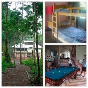 volontariat animaux en equateur : hébergement