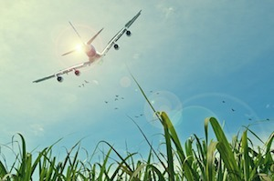 Pollution : Faut-il arrêter de voyager en avion ?