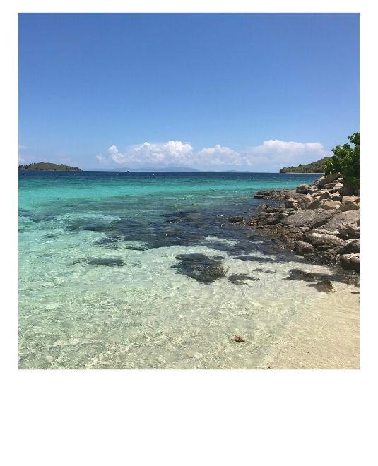 plage écovolontariat animaux marins Komodo