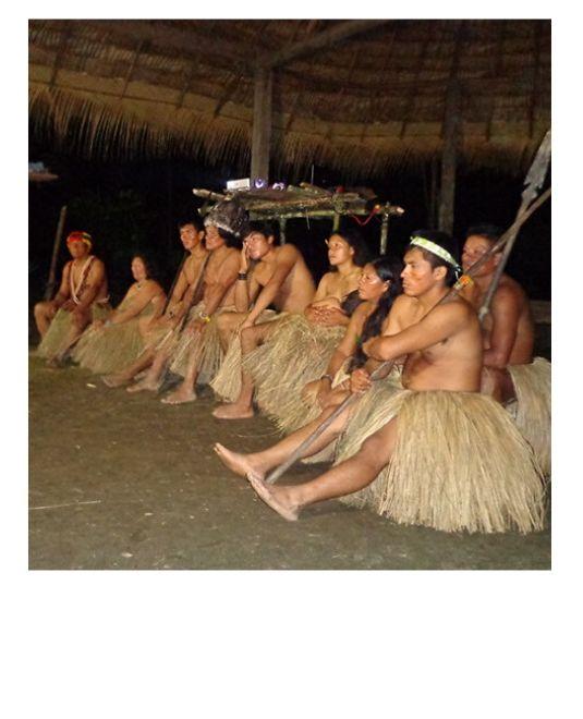 bénévolat animaux en forêt Amazonienne