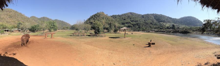 Le sanctuaire des éléphants en Thaïlande